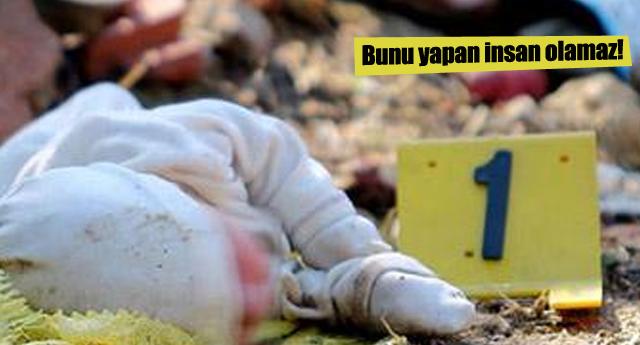 Mersin'de 1 haftalık bebeği ormana bıraktılar!