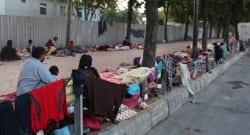 İstanbul'un ortasında kaldırımda yatıyorlar!
