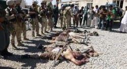 'Taliban militanlarının tamamını öldürdük'